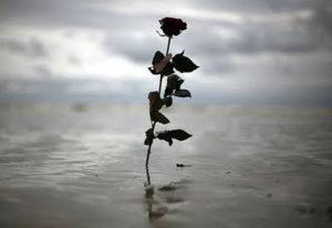 La causa raíz del Sufrimiento