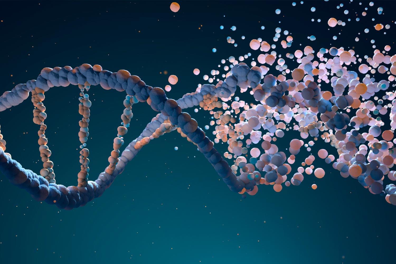 Este es el descubrimiento de la epigenética