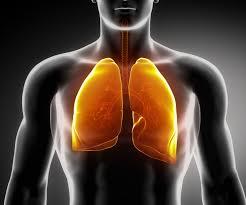 Emociones que afectan a los PULMONES
