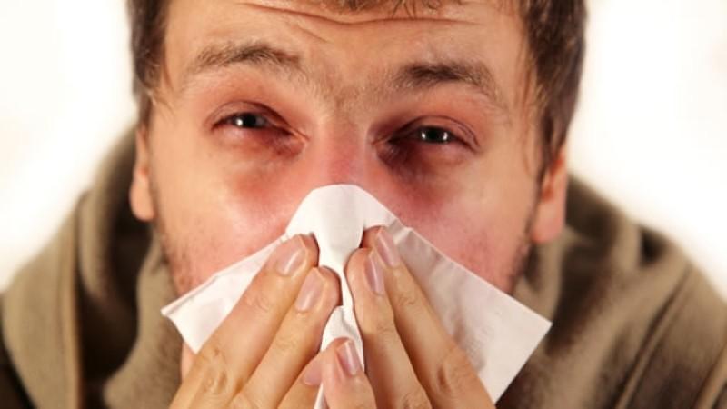 Origen emocional de la ALERGIA al polen, al polvo…